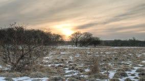 太阳升起在草甸 图库摄影