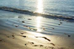 太阳反射在海边 免版税库存照片