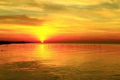 太阳发光金黄照亮美丽的海洋 免版税库存照片