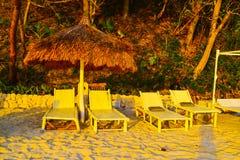 太阳发出光线在面对密林的椅子背景的日落光  库存照片