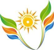 太阳叶子商标 免版税库存照片