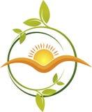 太阳叶子商标 免版税图库摄影