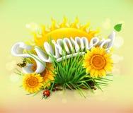 太阳和一些草、向日葵、瓢虫和蝴蝶 向量例证