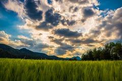 太阳和云彩比赛  图库摄影