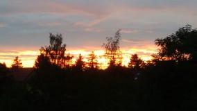 太阳和木头 库存图片