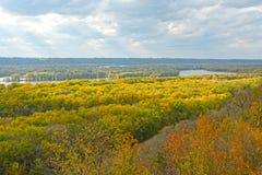 太阳和树荫在秋天的颜色 图库摄影
