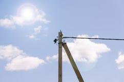 太阳和输电线 库存照片