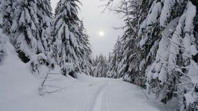 太阳和雪在吹口哨,BC 免版税库存图片