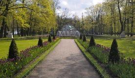 太阳喷泉,更低的公园, Peterhof 免版税库存照片