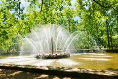 太阳喷泉Peterhof 免版税库存图片