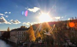 太阳在布拉格 免版税库存照片