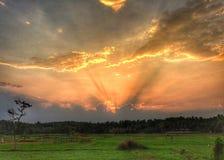 太阳在领域设置了 免版税库存照片
