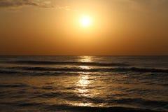 太阳太阳米 库存照片