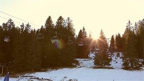 太阳强光通过冷杉的上面 瑞士, Flums 股票视频