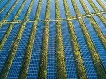 太阳电池板农场 库存照片