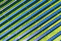 太阳电池板或光致电压的植物草甸的-太阳的反射 库存图片