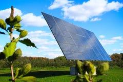 太阳电池板1 免版税库存图片