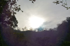 太阳的上升 库存照片