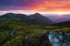 太阳的光芒在有花的草坪落 与高不尽的山、天空与云彩和日落的一个美好的风景 免版税库存照片