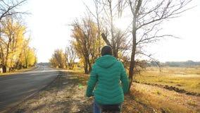 太阳的光芒照亮的桃红色夹克骑马自行车的少女在秋天公园 慢的行动 影视素材