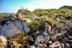 太阳的光芒以石头和草为背景的 免版税库存图片