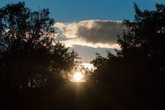 太阳的光芒 免版税图库摄影