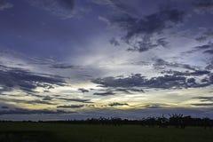 太阳的反射在晚上和在天空的云彩与在稻田的阴影树 免版税图库摄影