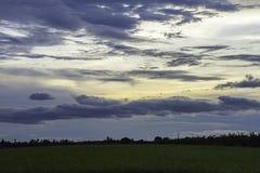 太阳的反射在晚上和在天空的云彩与在稻田的阴影树 免版税库存照片