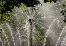 太阳的喷泉 库存图片