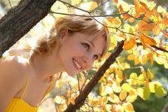 太阳的秋天温暖 免版税库存图片