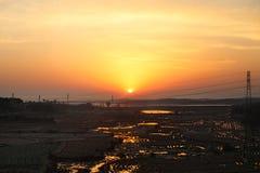 太阳的美好的橙色日出和在米领域的树荫下 图库摄影