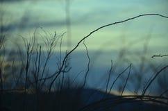 太阳的设置在蓝天的 免版税库存照片