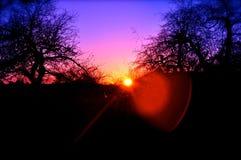 太阳的设置在蓝天的 库存照片