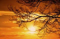 太阳的设置在蓝天的 免版税库存图片