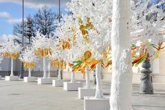 太阳的象征与多彩多姿的丝带的在一棵白色树的分支,太阳图片 图库摄影