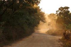 太阳的道路 图库摄影