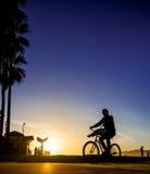太阳的骑自行车者 库存照片