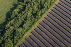 太阳能发电厂鸟瞰图  库存图片