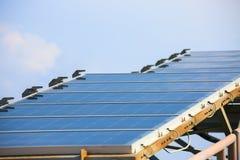太阳能电池产生的电能在太阳光,蓝色光致电压的太阳电池板特写镜头,安全世界的绿色能量之前 库存图片
