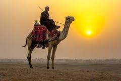太阳设置在撒哈拉大沙漠在开罗,埃及 库存照片