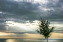 太阳通过云彩,空白,美丽的景色发光 免版税库存照片