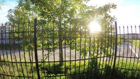 太阳通过篱芭 股票视频