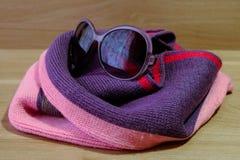 太阳镜和围巾 库存照片