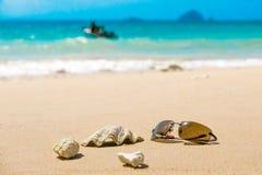 太阳镜和壳在热带海滩与离去的小船 库存图片