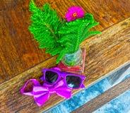 太阳镜和蝶形领结 图库摄影