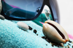 太阳镜和贝壳在海滩毛巾 免版税库存照片