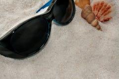 太阳镜和贝壳在海滩 免版税库存图片