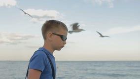 太阳镜的少年看海 股票录像
