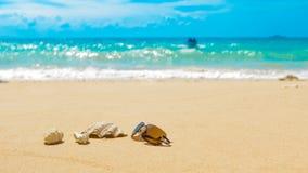 太阳镜轰击在沙滩,接踵而来的小船的珊瑚礁 免版税库存照片
