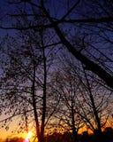 太阳,夜, 免版税库存图片